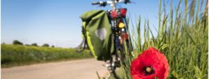 Inspiratie: trek eropuit voor een staycation dit jaar